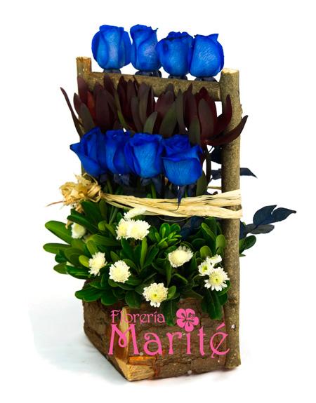 escalado-rosas-azules-2